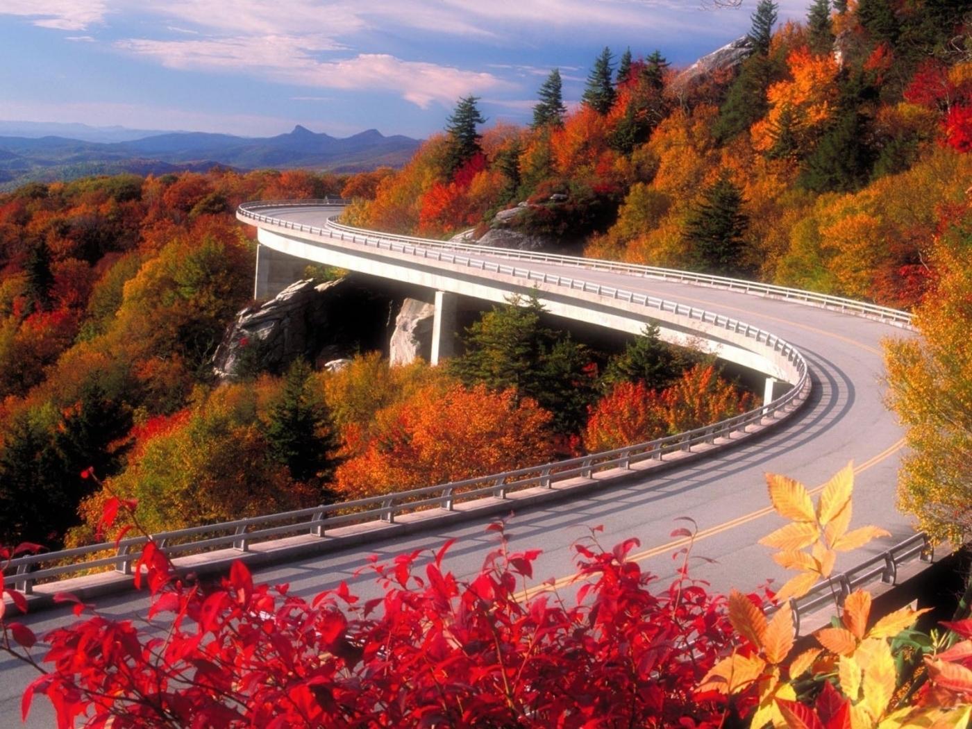 Скачать картинку Осень, Дороги, Пейзаж в телефон бесплатно.