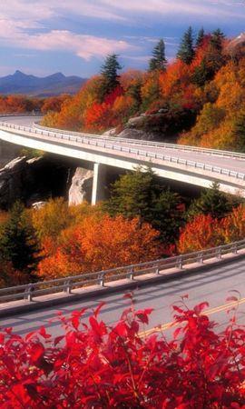 26444 скачать обои Пейзаж, Дороги, Осень - заставки и картинки бесплатно