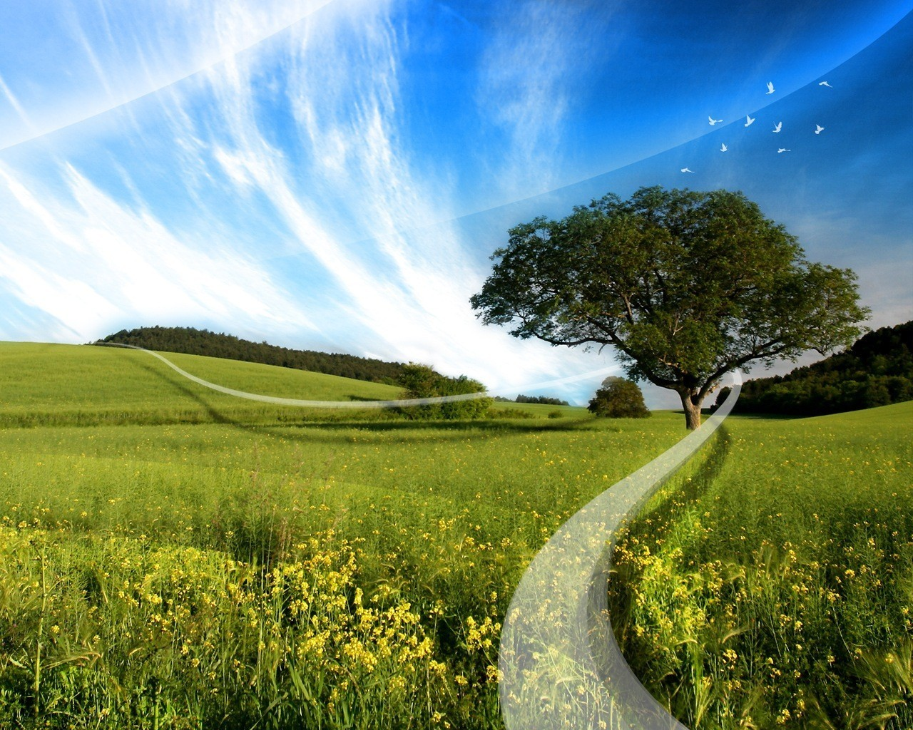 18976 download wallpaper Landscape, Trees, Fields, Background, Sky, Clouds screensavers and pictures for free