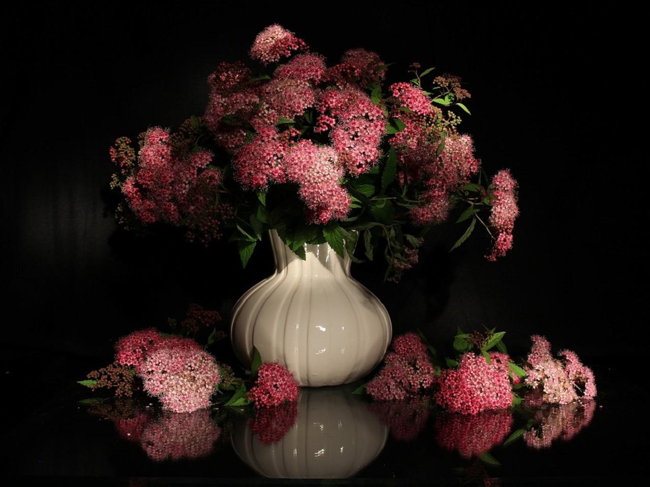 37802 скачать обои Растения, Цветы, Букеты - заставки и картинки бесплатно