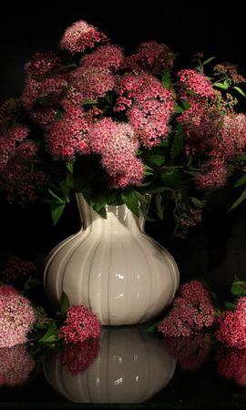 37802 descargar fondo de pantalla Plantas, Flores, Bouquets: protectores de pantalla e imágenes gratis