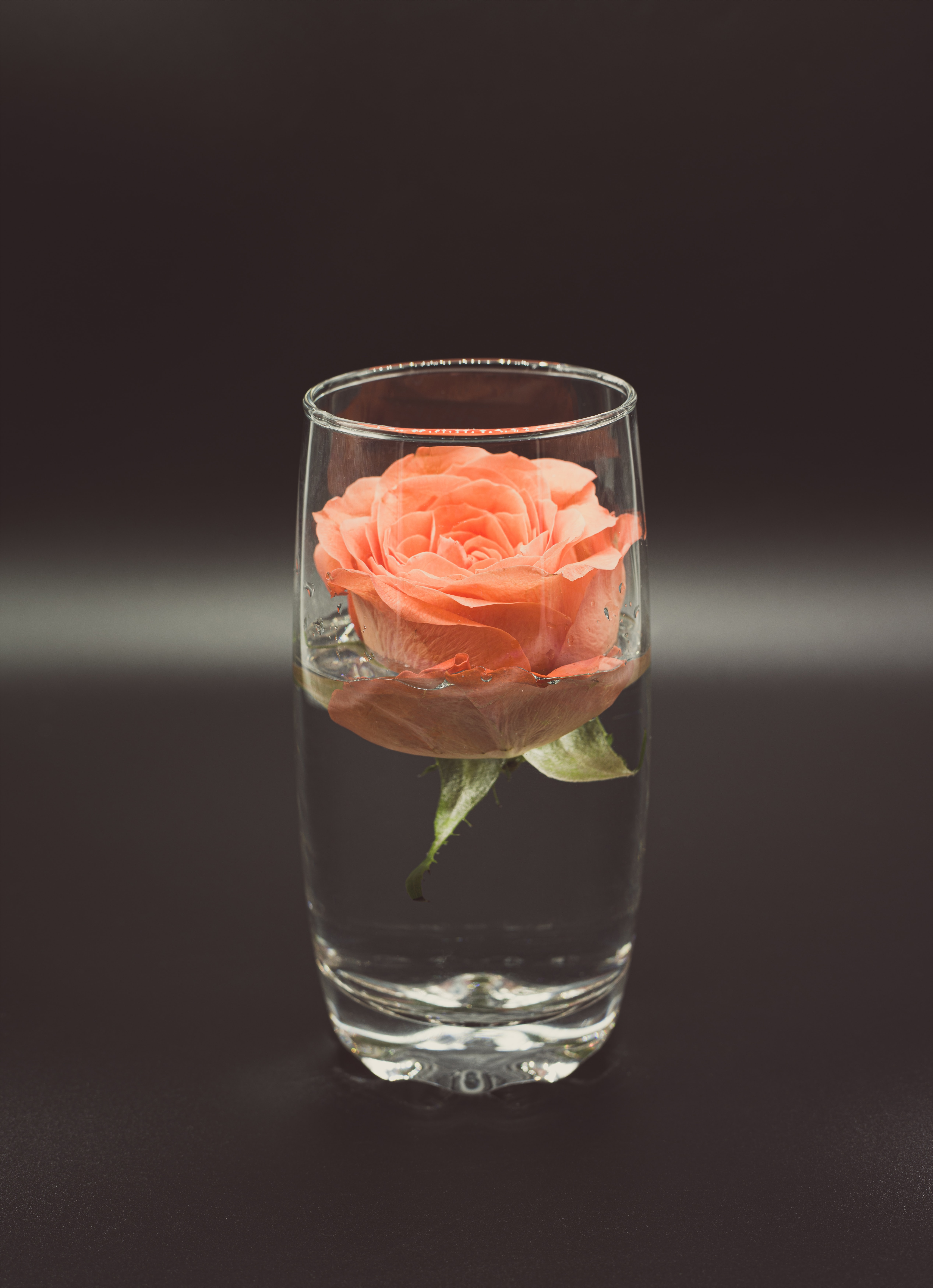 128200 download wallpaper Flowers, Water, Flower, Rose Flower, Rose, Glass screensavers and pictures for free