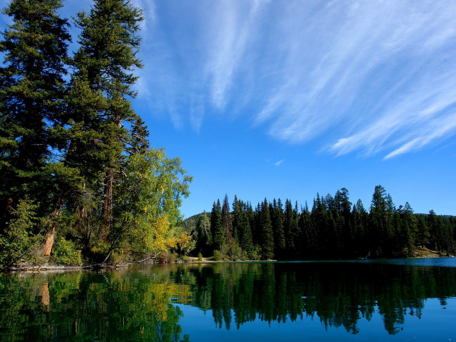 127222 free wallpaper 240x320 for phone, download images Nature, Sky, Lake, Forest 240x320 for mobile