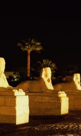 25082 скачать обои Пейзаж, Ночь, Египет, Сфинкс - заставки и картинки бесплатно