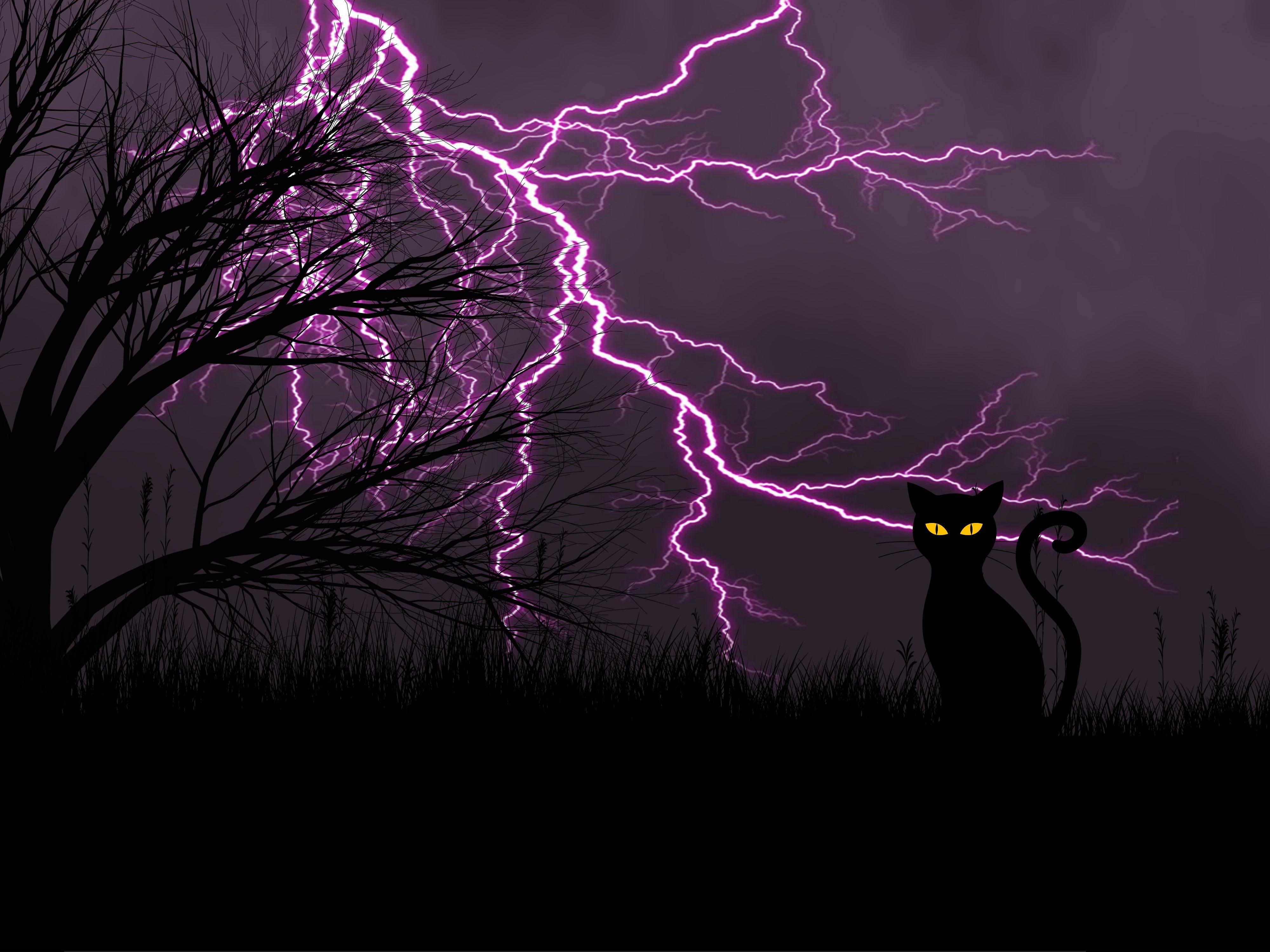 51209 скачать обои Молния, Черный Кот, Трава, Арт, Ночь - заставки и картинки бесплатно