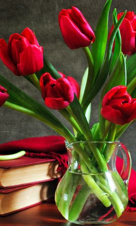 37913 descargar fondo de pantalla Plantas, Flores, Tulipanes, Bouquets: protectores de pantalla e imágenes gratis