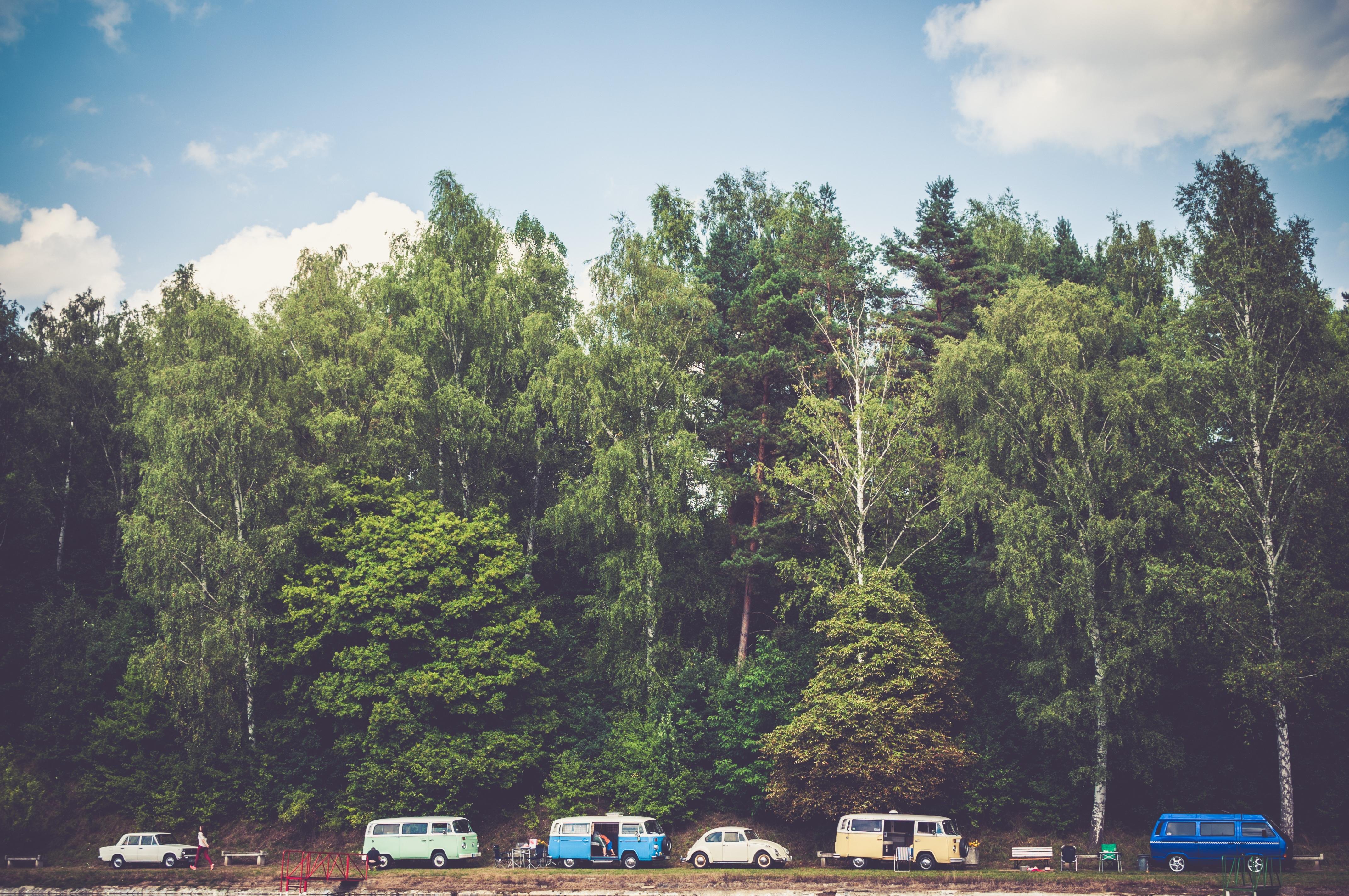 120218 fond d'écran 720x1560 sur votre téléphone gratuitement, téléchargez des images Nature, Arbres, Forêt, Camping, Fourgons, Vans 720x1560 sur votre mobile