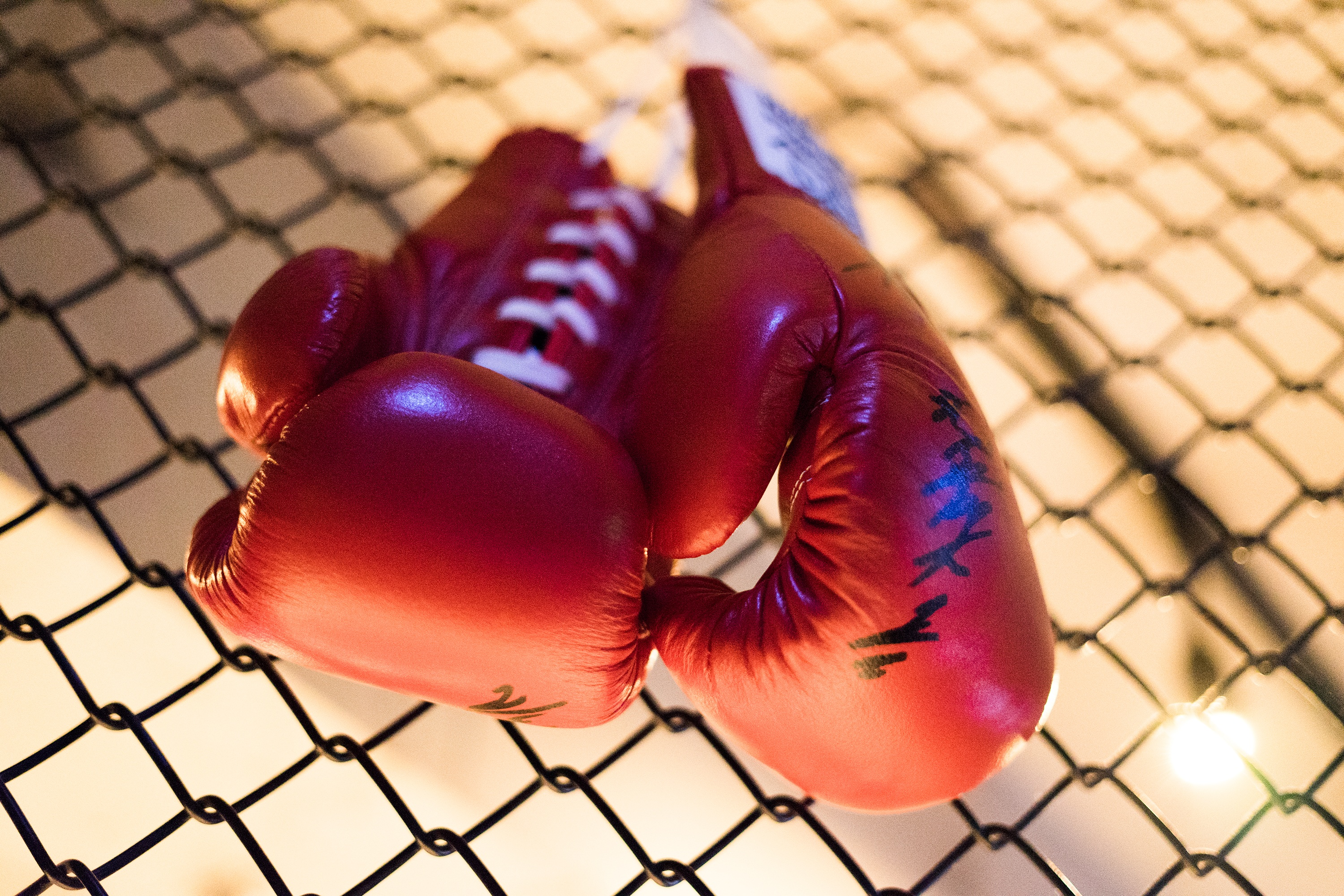 81065 download wallpaper Sports, Boxing, Fight, Struggle, Boxing Gloves screensavers and pictures for free