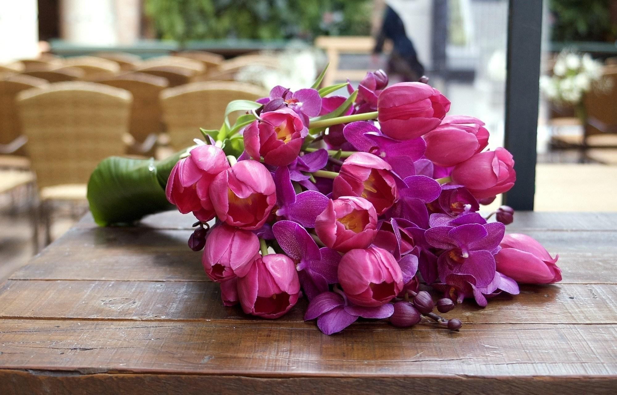 Популярные картинки Орхидеи в HD качестве