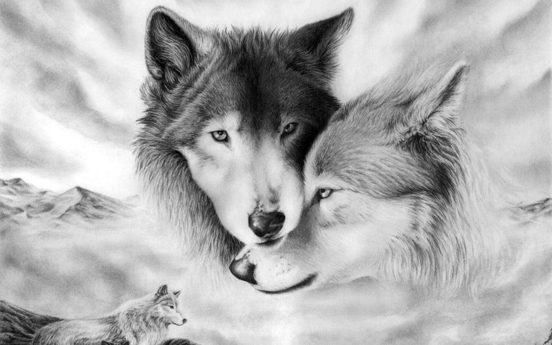 17963 скачать обои Волки, Рисунки, Животные - заставки и картинки бесплатно