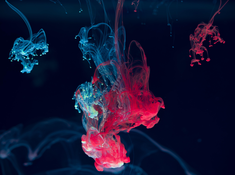 68392 скачать обои Макро, Чернила, Вода, Смешивание, Краски, Капли, Красный, Синий - заставки и картинки бесплатно