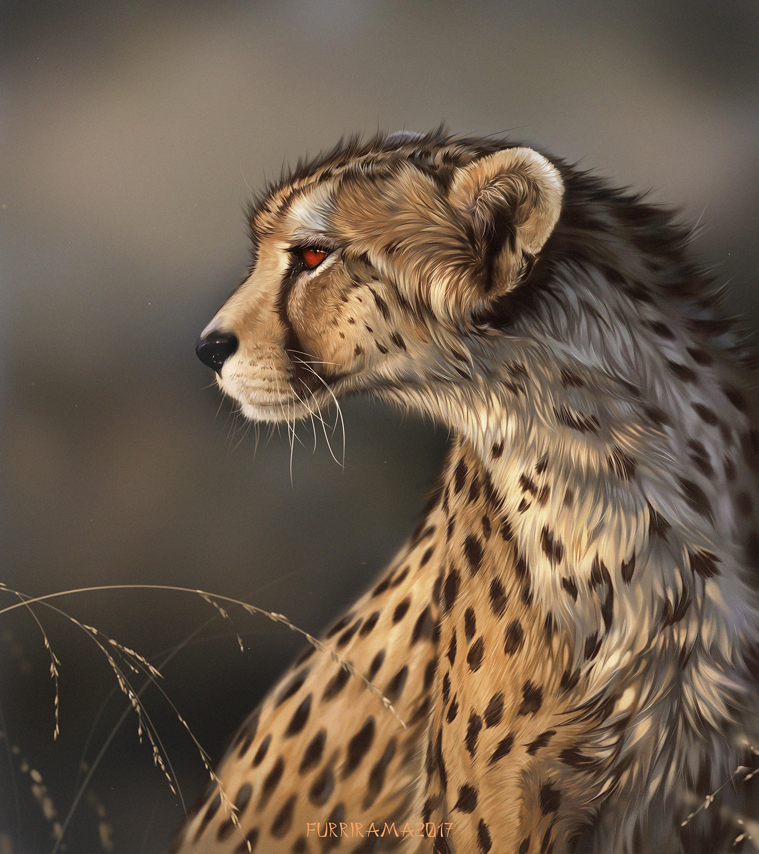 81674 download wallpaper Iris, Predator, Art, Big Cat, Wildlife screensavers and pictures for free