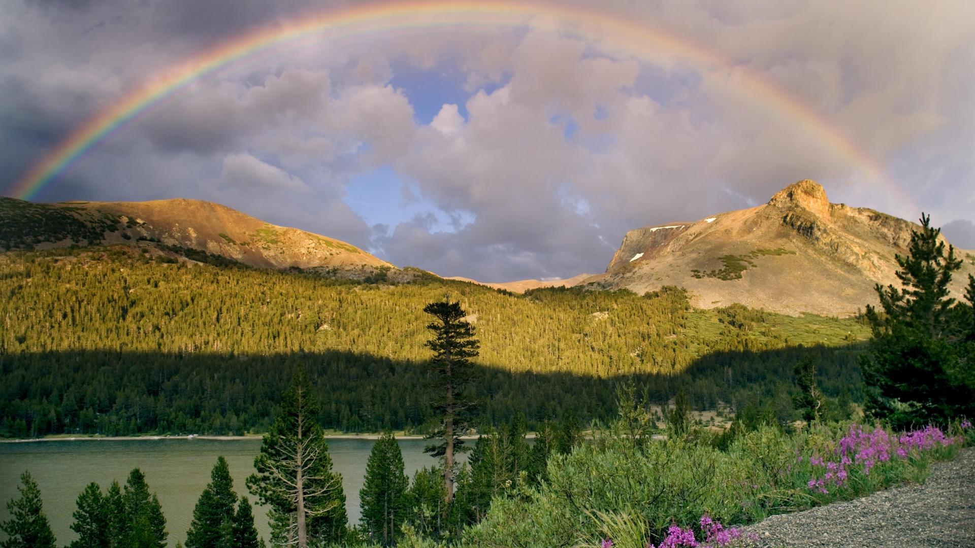 32219 免費下載壁紙 景观, 河, 彩虹 屏保和圖片