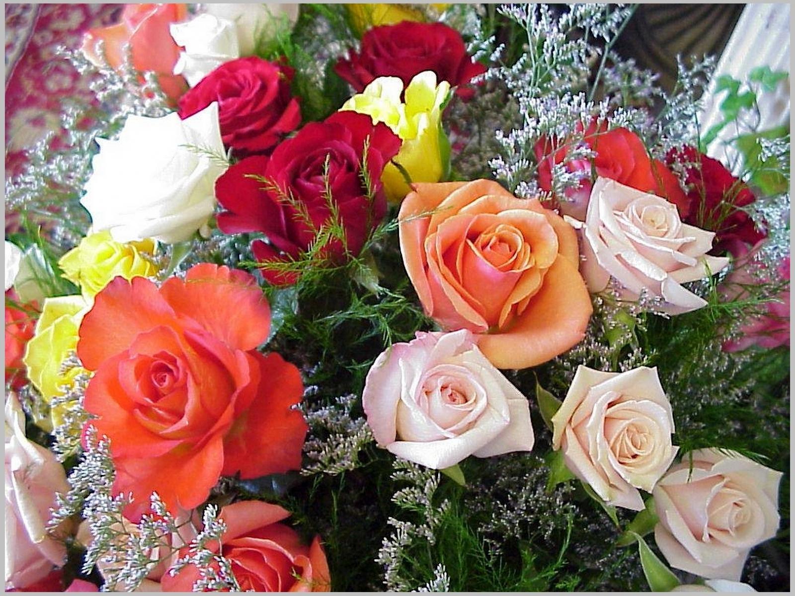 7348 скачать обои Праздники, Растения, Цветы, Розы, 8 Марта - заставки и картинки бесплатно