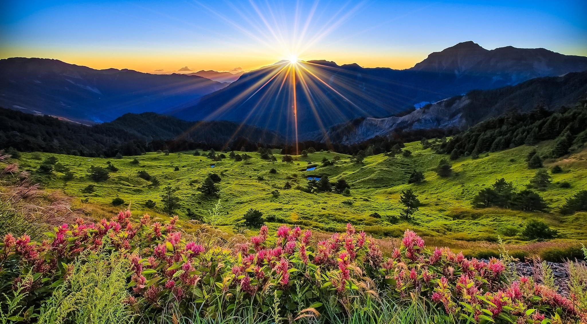 76711 скачать обои Горы, Цветы, Рассвет, Природа, Трава, Поляна - заставки и картинки бесплатно