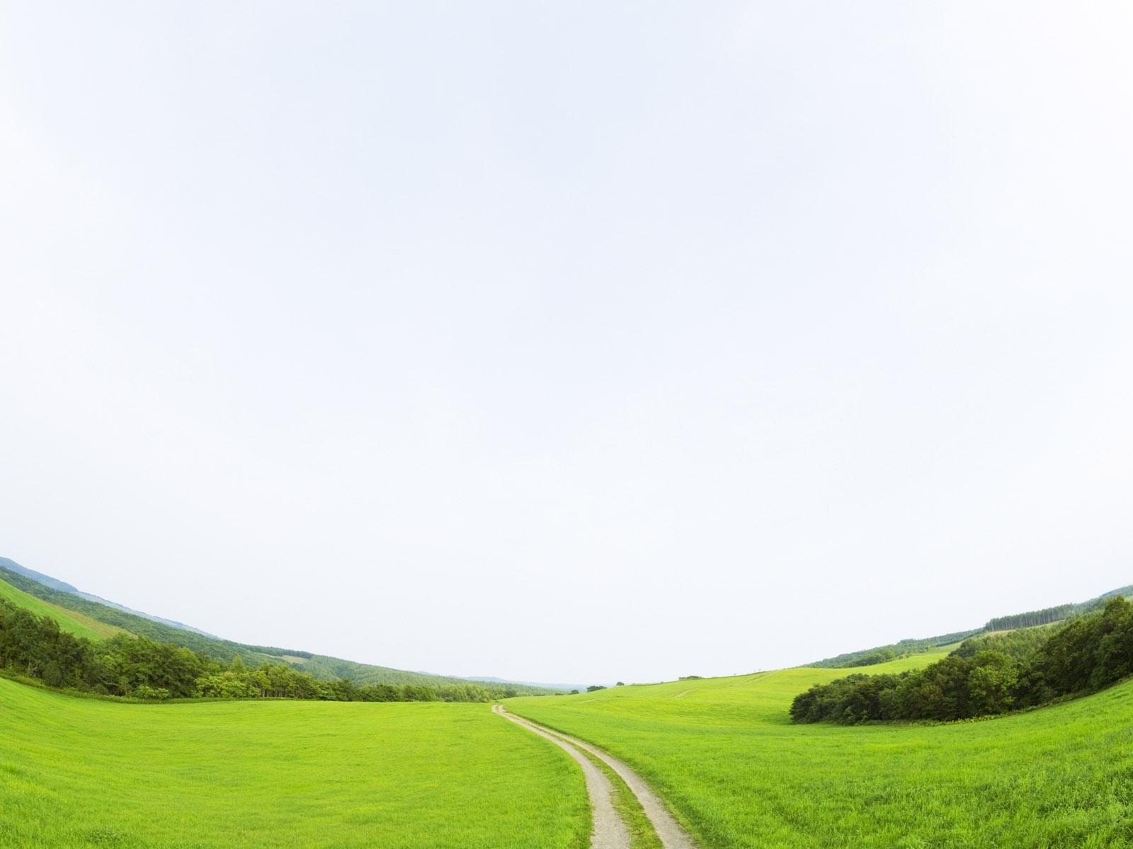 1544 скачать обои Пейзаж, Трава, Дороги - заставки и картинки бесплатно