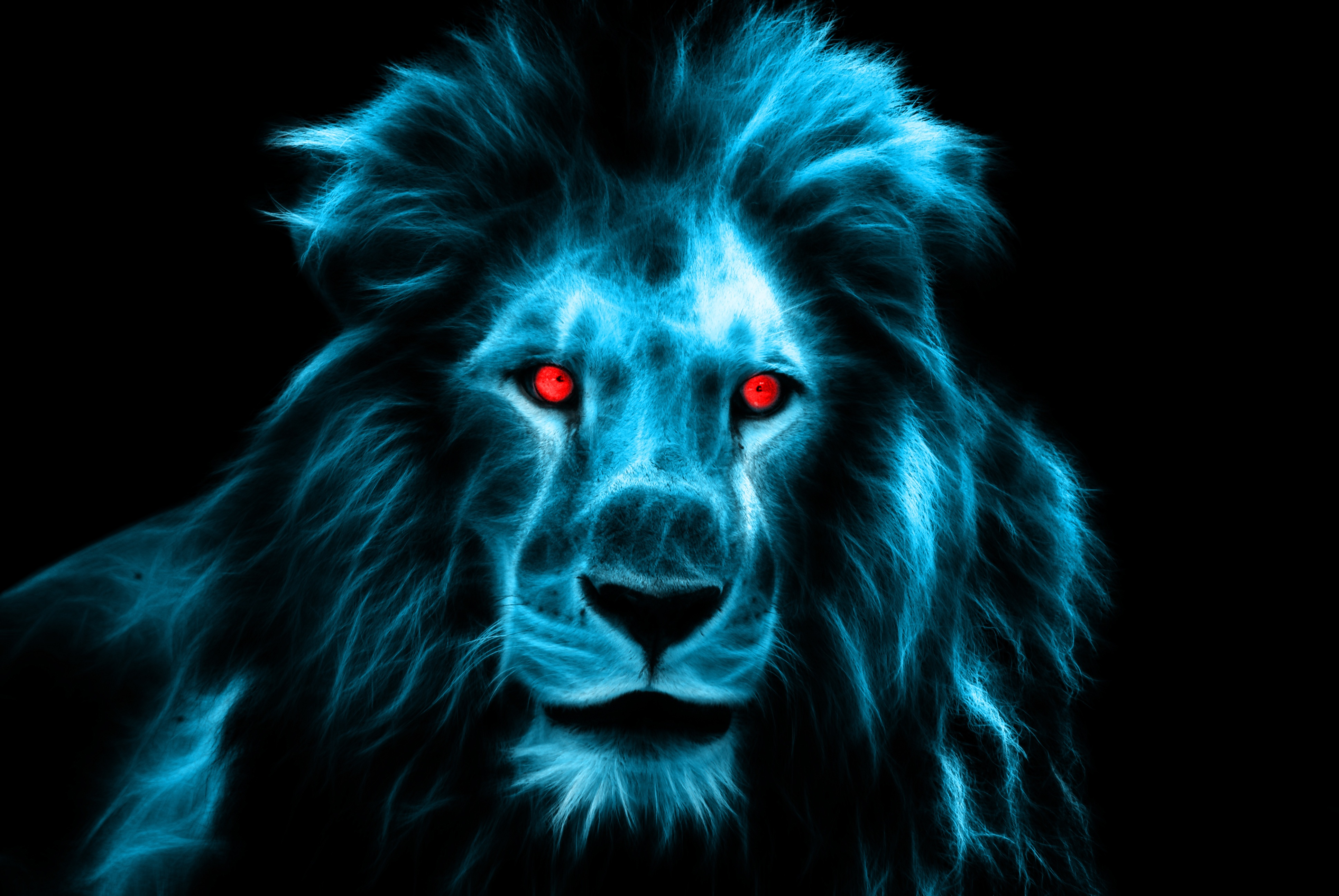 57693 download wallpaper Animals, Lion, Predator, Big Cat, Eyes, Mane screensavers and pictures for free