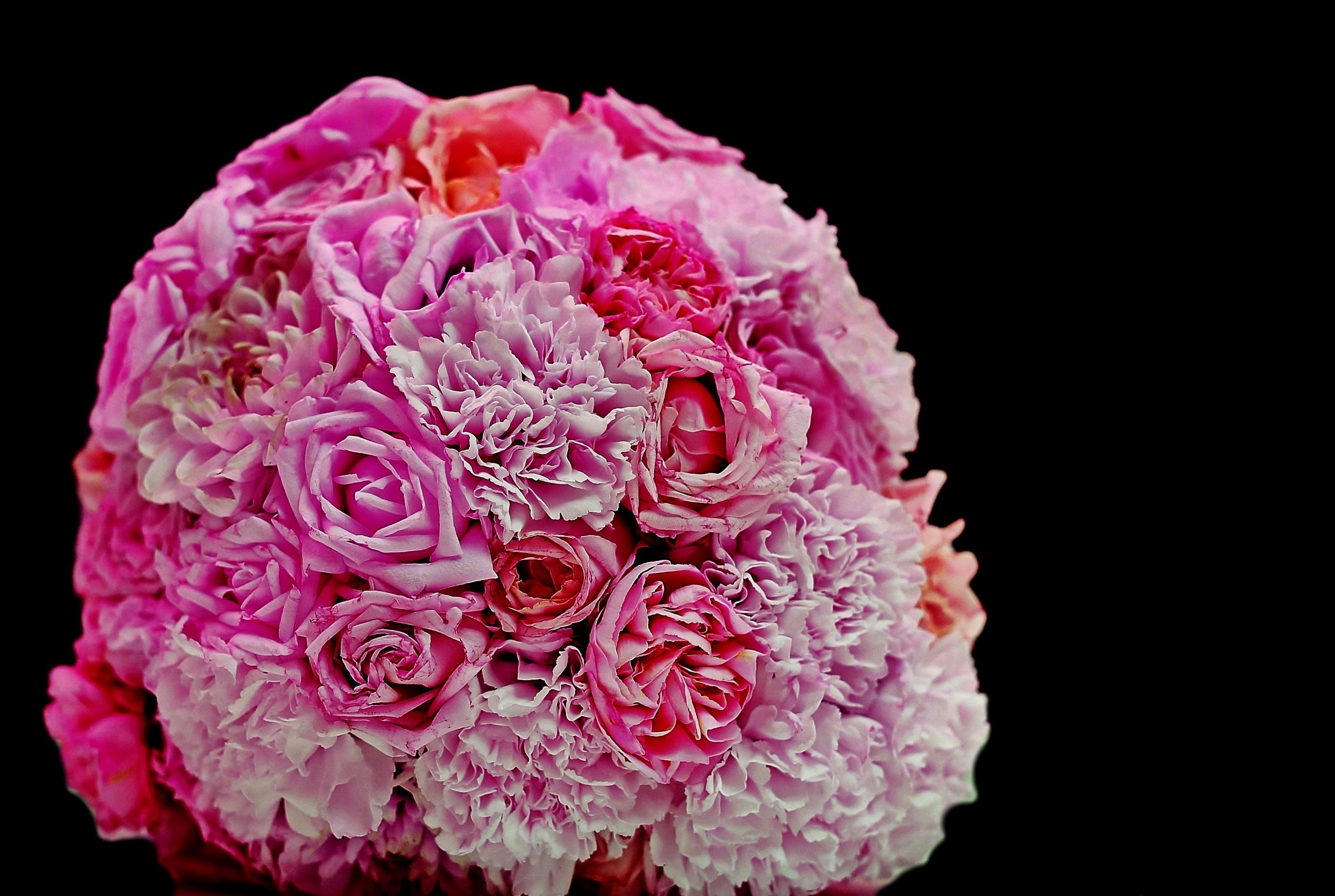 134529 descargar fondo de pantalla Roses, Flores, Rosa, Claveles, Ramo, Rosado: protectores de pantalla e imágenes gratis
