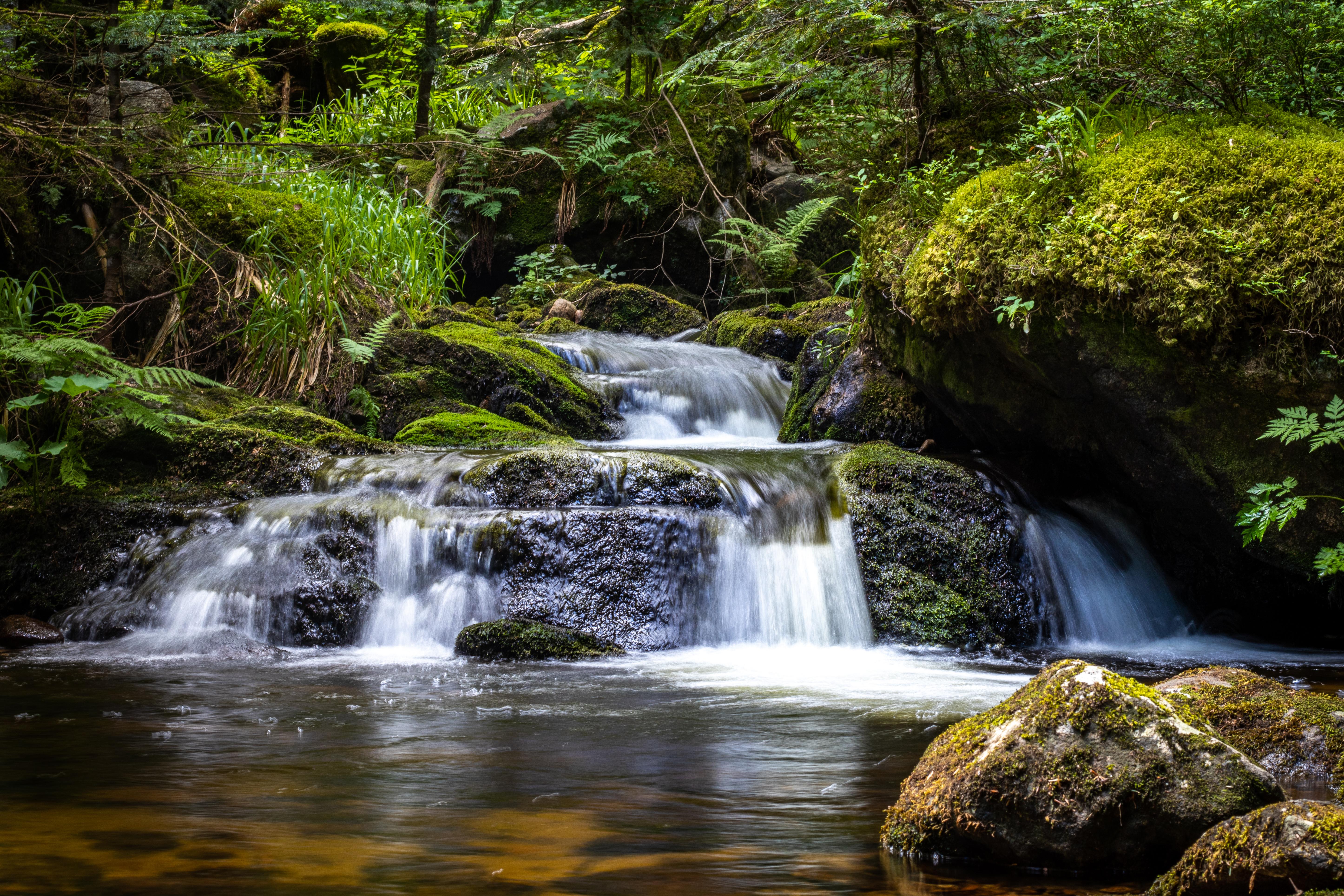124659 обои 1080x2400 на телефон бесплатно, скачать картинки Растения, Водопад, Природа, Вода, Камни, Течение 1080x2400 на мобильный