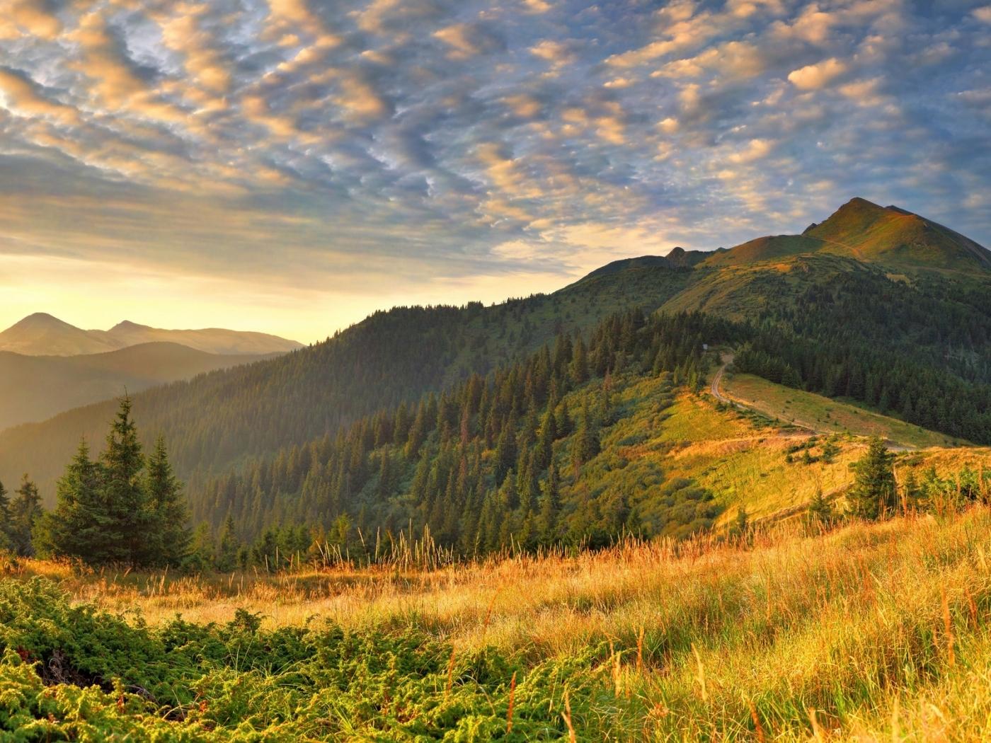 28806 скачать обои Пейзаж, Деревья, Горы - заставки и картинки бесплатно