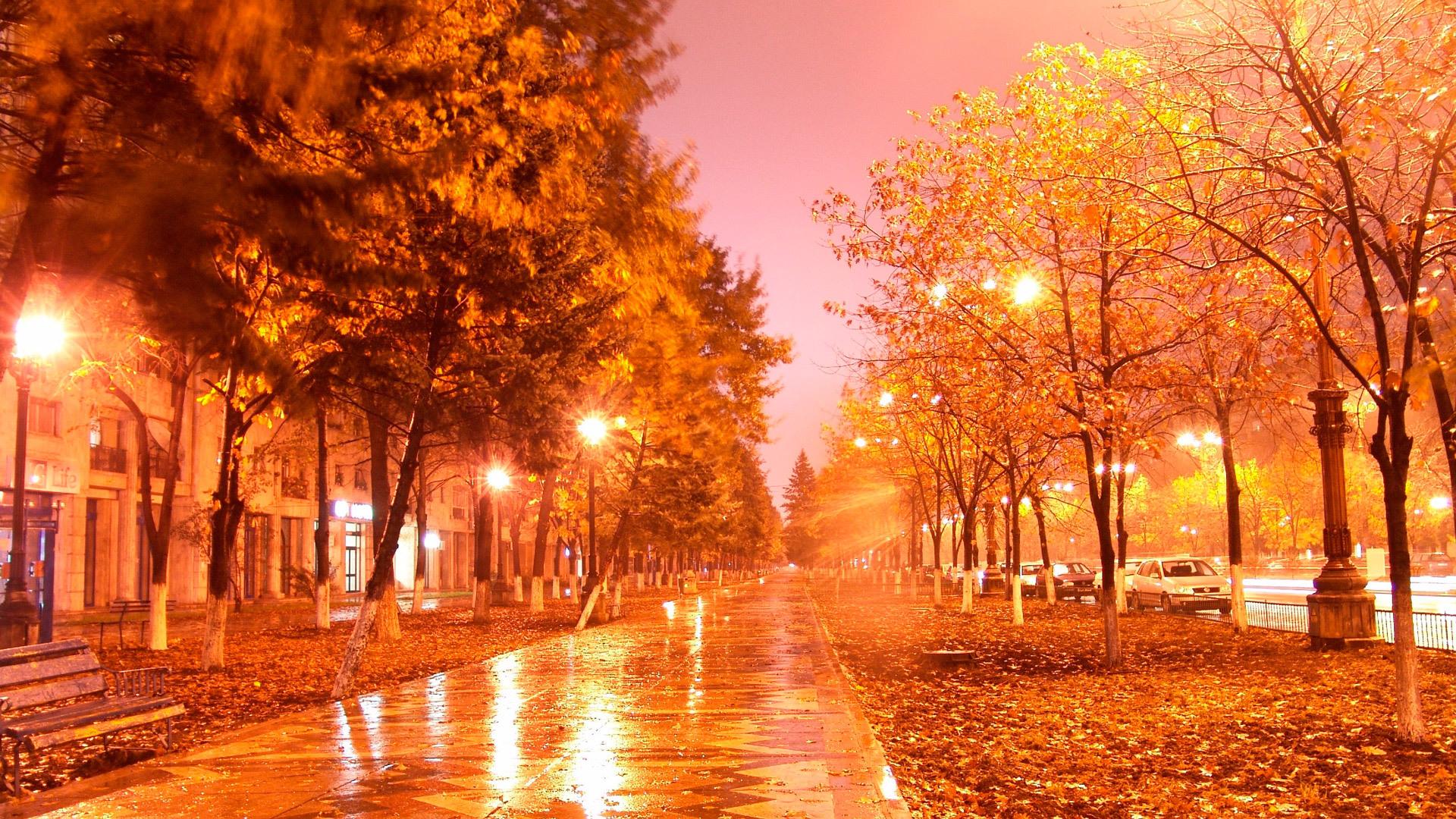 Завантажити картинку 22329: Пейзаж, Дерева, Осінь, Вулиці, Ніч шпалери на робочий стіл безкоштовно