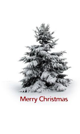 13183 скачать обои Праздники, Зима, Деревья, Новый Год (New Year), Снег, Елки, Рождество (Christmas, Xmas) - заставки и картинки бесплатно