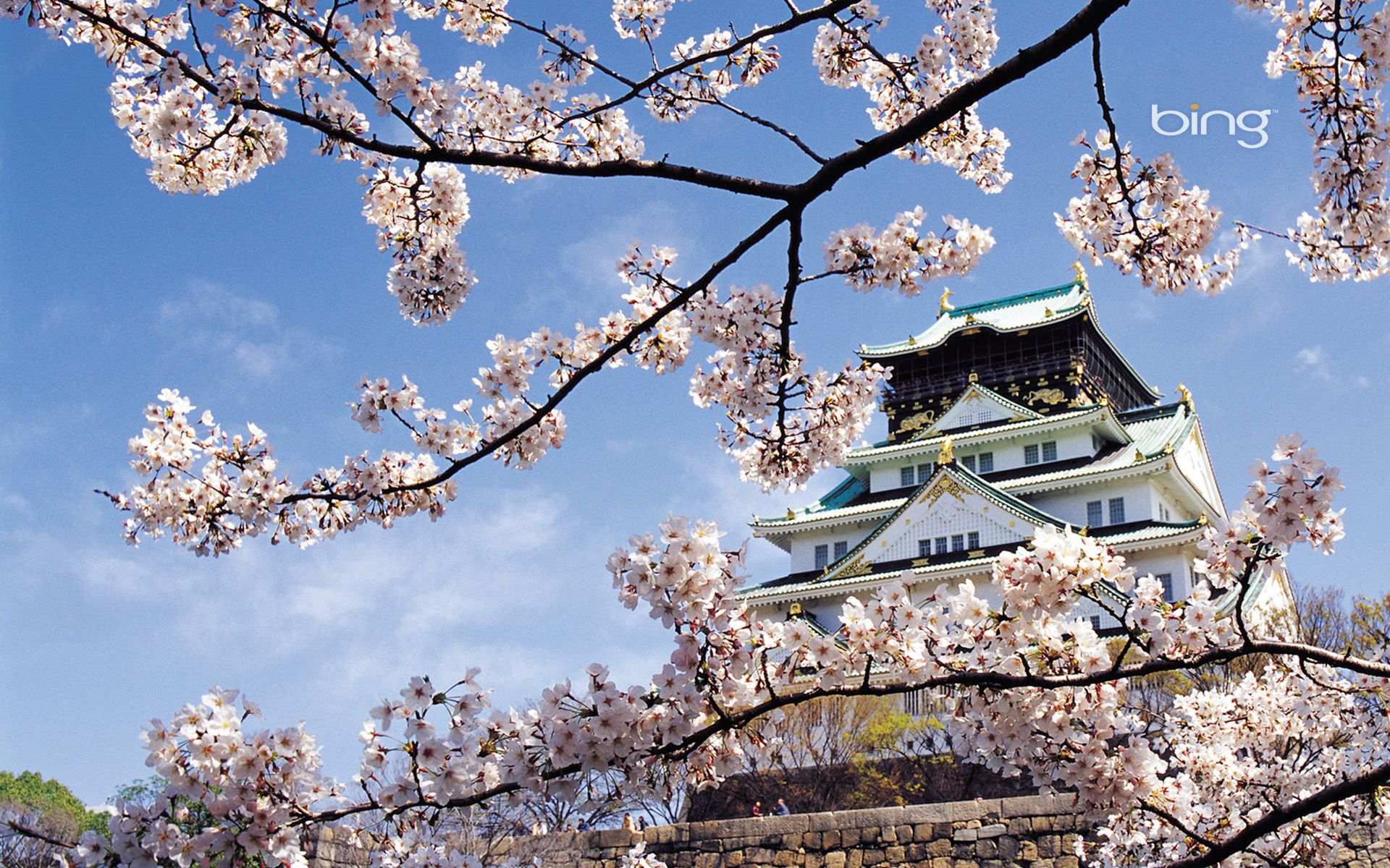 67016 Screensavers and Wallpapers Sakura for phone. Download Japan, Nature, Architecture, Sakura, Bloom, Flowering, Spring, Palace pictures for free