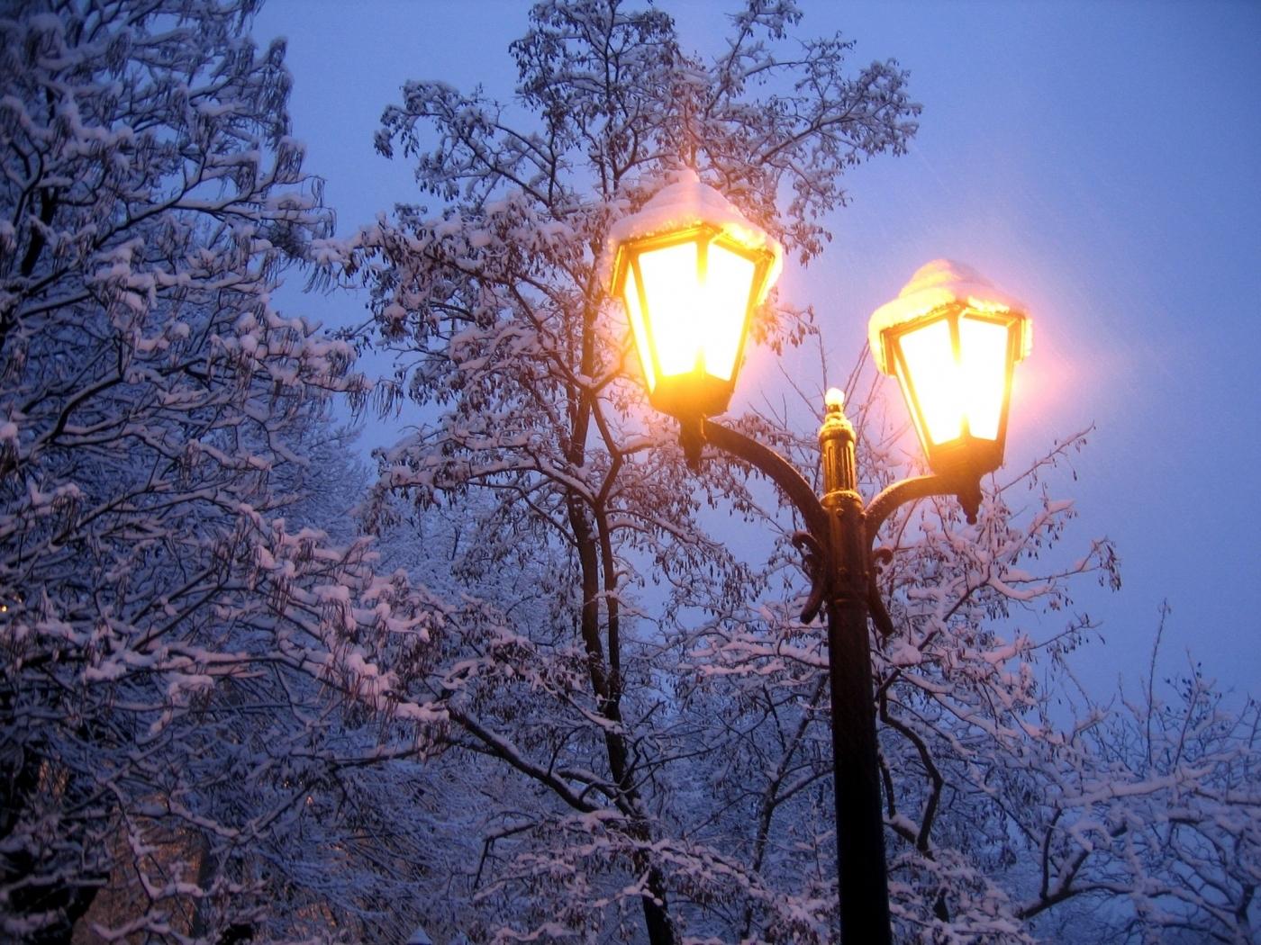 23487 скачать обои Пейзаж, Деревья, Ночь, Снег - заставки и картинки бесплатно