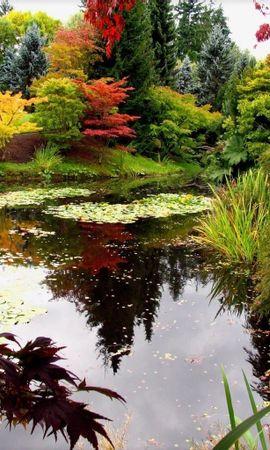 4179 скачать обои Растения, Пейзаж, Вода, Река, Осень - заставки и картинки бесплатно