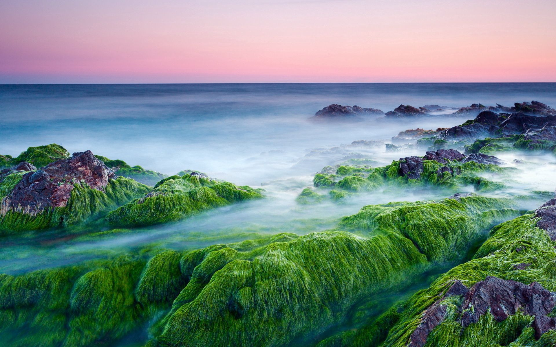 89101 download wallpaper Nature, Moss, Stones, Growths, Sea, Haze, Steam, Evaporation, Cool, Coolness screensavers and pictures for free