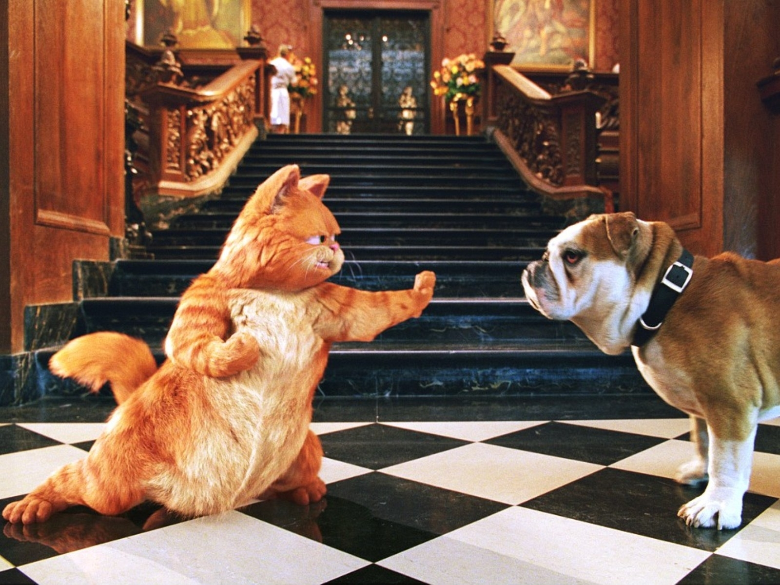 1491 download wallpaper Cinema, Animals, Cats, Garfild screensavers and pictures for free