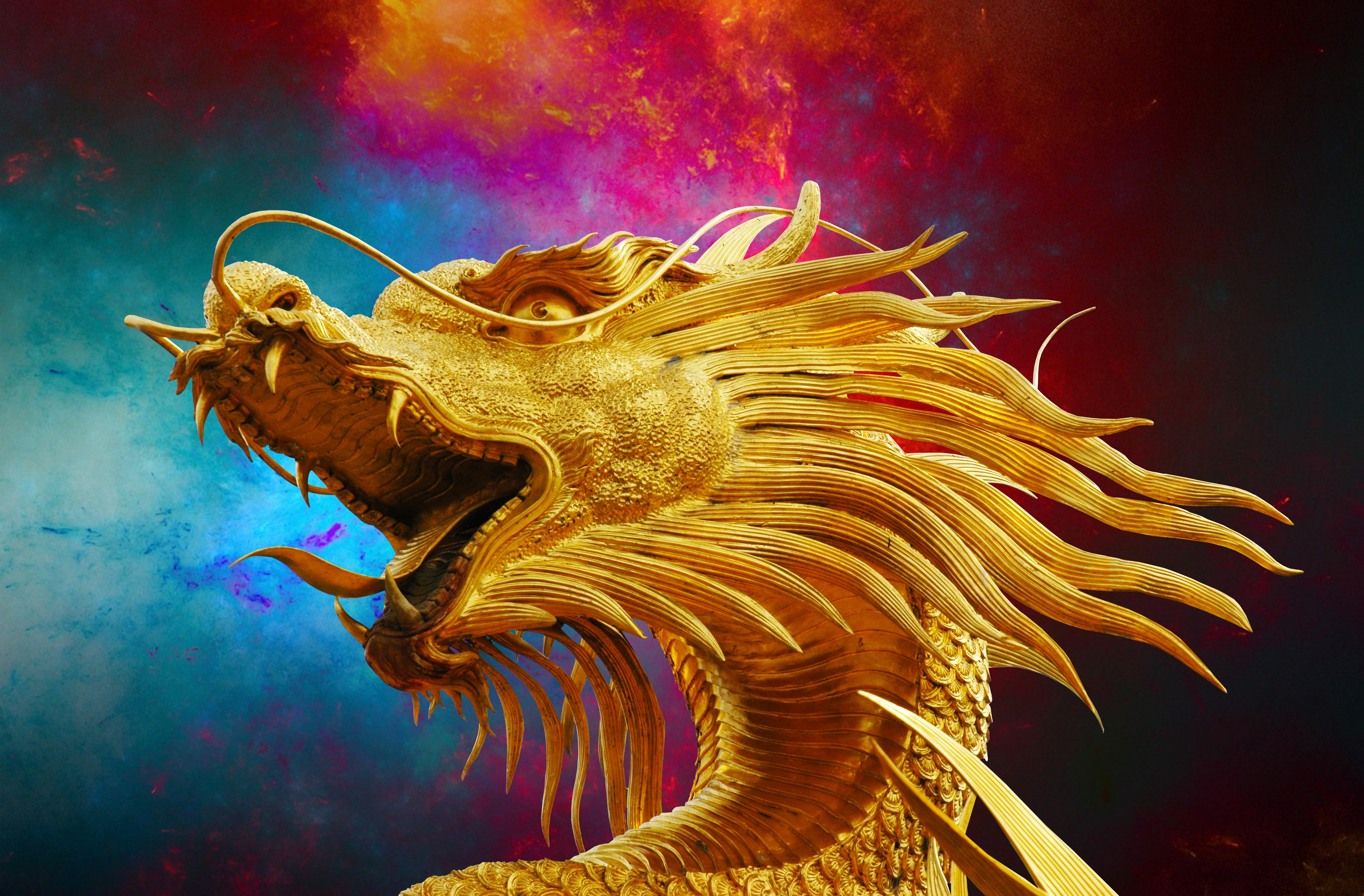 92688 download wallpaper Art, Golden Dragon, Dragon, Mane, Face screensavers and pictures for free