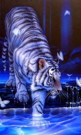 Baixar papel de parede gratuito 21193: papel de parede Animais, Tigres, Imagens para telefone celular