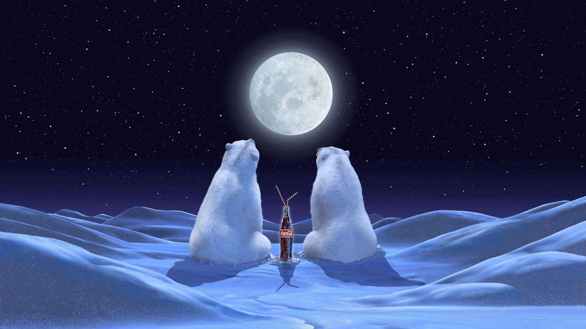 55283 скачать обои Снег, Праздники, Медведи, Кола - заставки и картинки бесплатно
