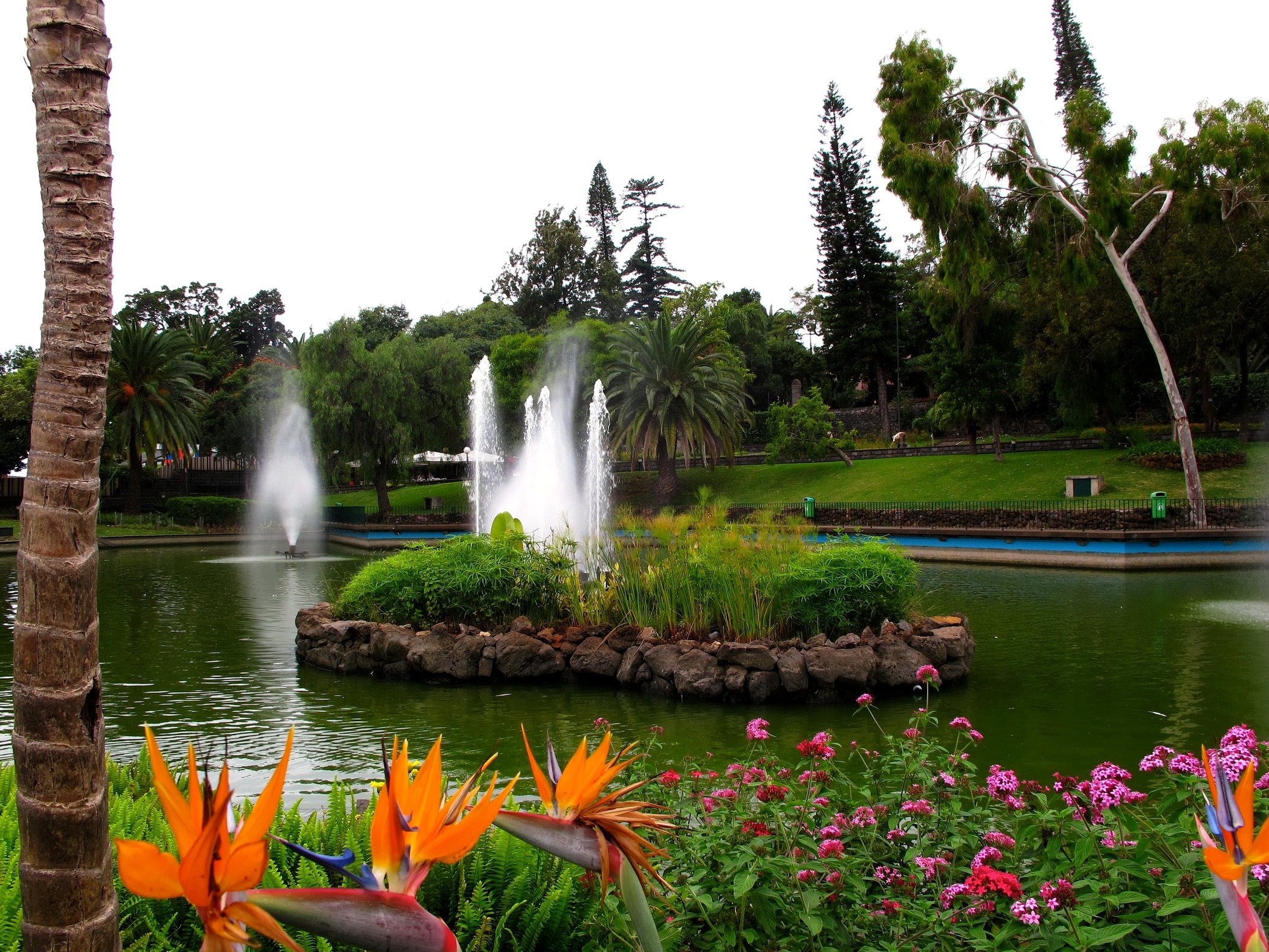 145986 Screensavers and Wallpapers Fountain for phone. Download Nature, Flowers, Fountain, Registration, Typography, Garden, Pond, Brightly pictures for free