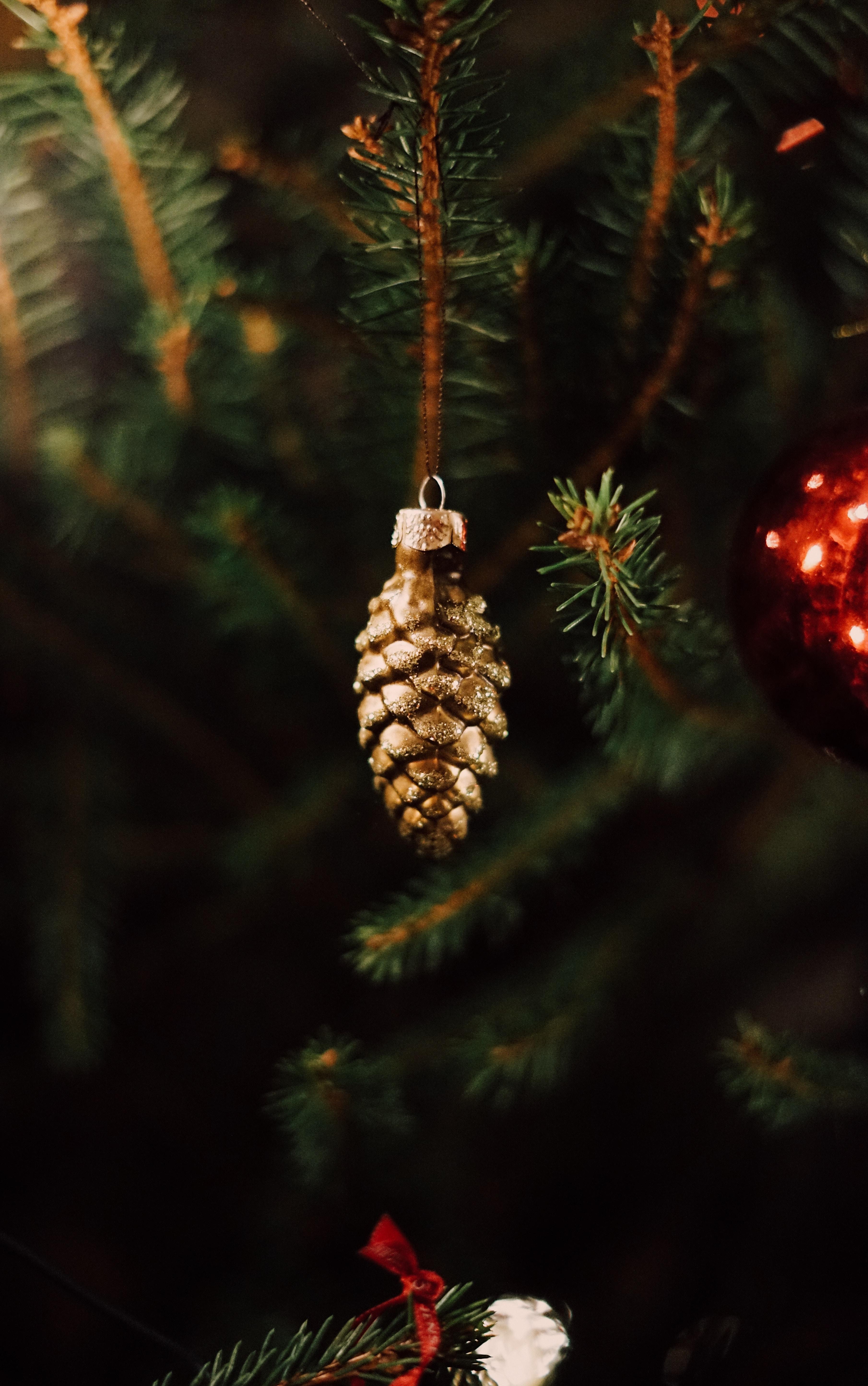 59078 Hintergrundbild herunterladen Feiertage, Neujahr, Dekoration, Weihnachten, Neues Jahr, Kegel, Weihnachtsbaum, Beule - Bildschirmschoner und Bilder kostenlos