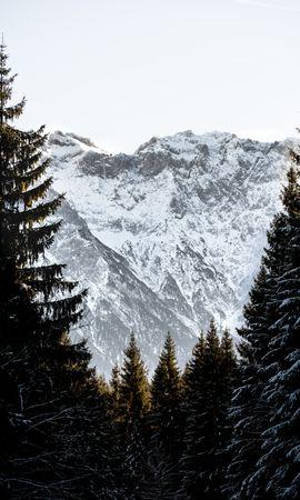 119546 télécharger le fond d'écran Nature, Arbres, Neige, Hiver, Montagnes, Paysage - économiseurs d'écran et images gratuitement