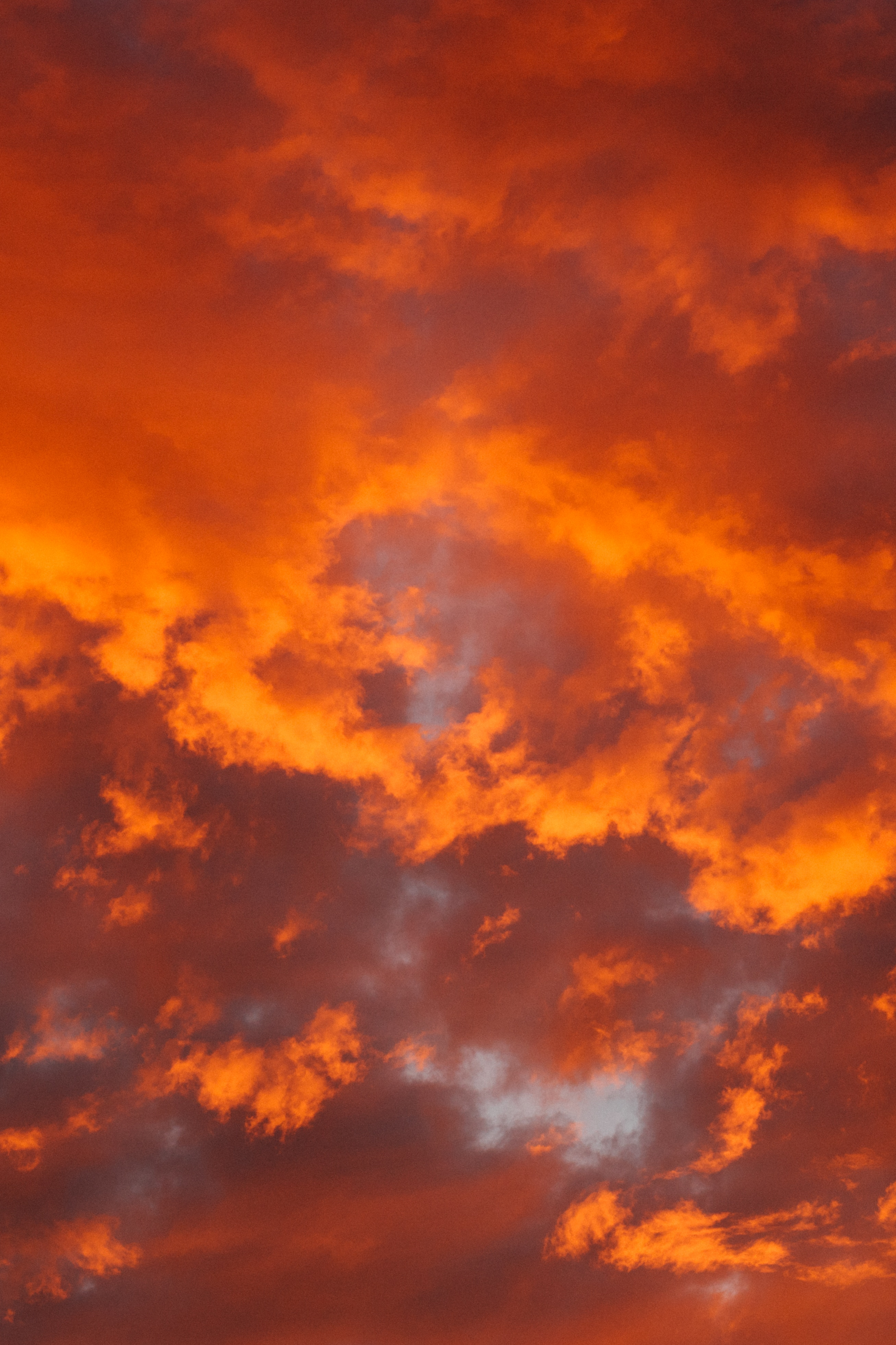 57392 скачать Оранжевые обои на телефон бесплатно, Природа, Облака, Оранжевый, Огненный, Пористый Оранжевые картинки и заставки на мобильный