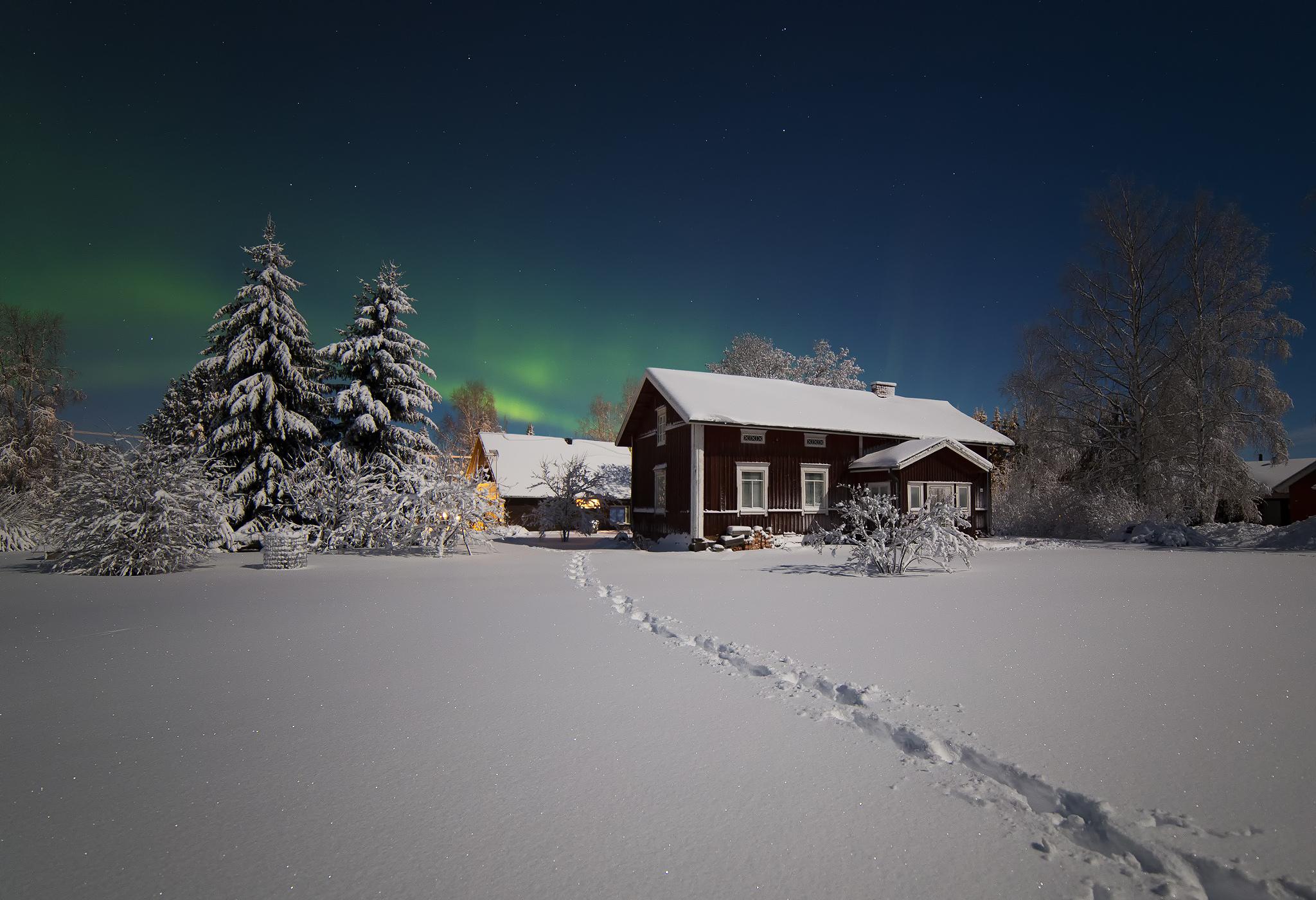 156618 Hintergrundbild herunterladen Bäume, Winterreifen, Natur, Schnee, Haus, Nordlichter, Aurora Borealis - Bildschirmschoner und Bilder kostenlos