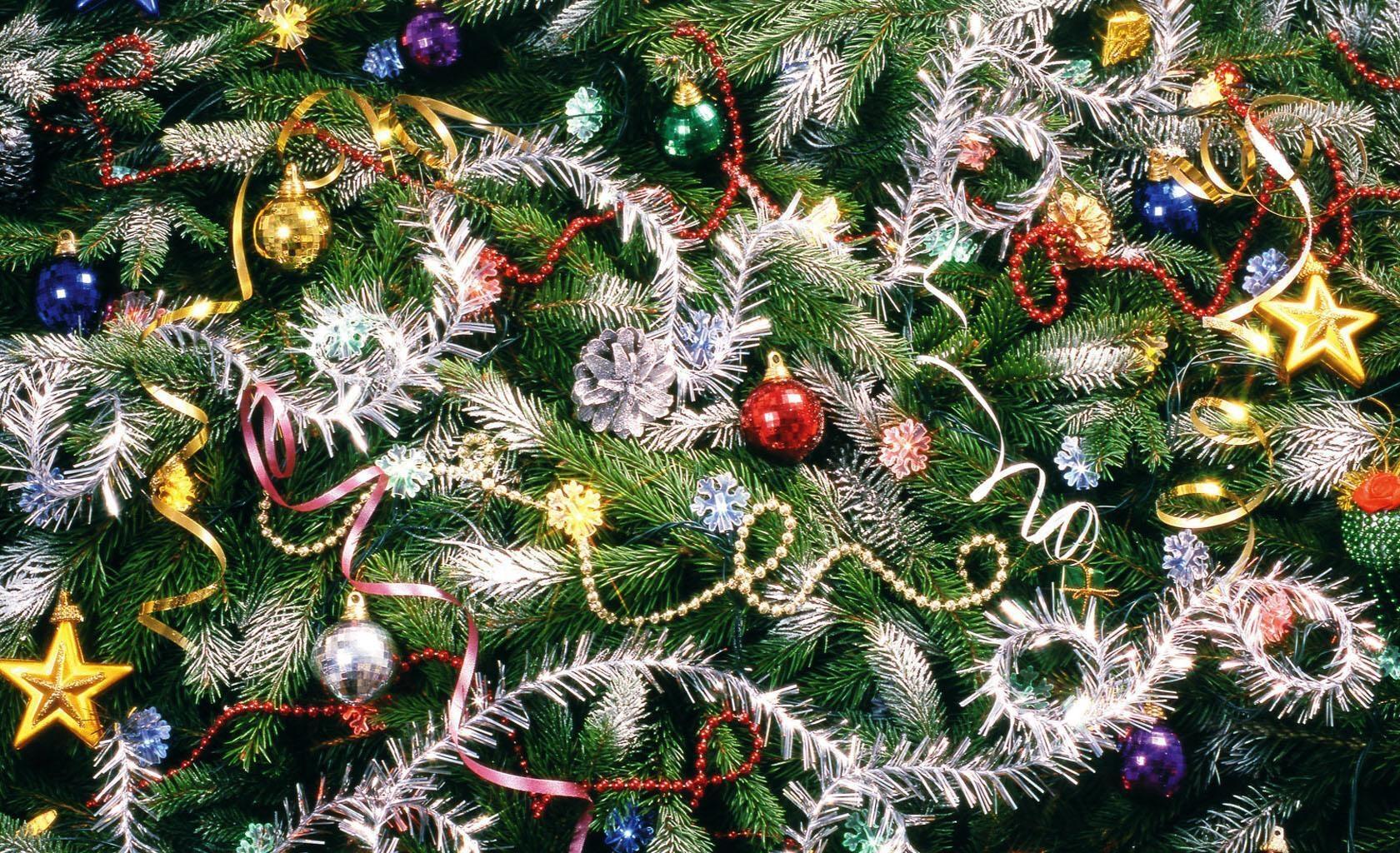 76167 Bildschirmschoner und Hintergrundbilder Feiertage auf Ihrem Telefon. Laden Sie Feiertage, Weihnachten, Nadeln, Neujahr, Dekoration, Neues Jahr, Urlaub, Weihnachtsschmuck, Weihnachtsbaum Spielzeug, Weihnachtsbaum Bilder kostenlos herunter