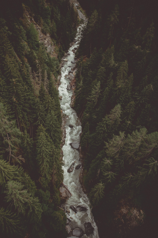 57338 免費下載壁紙 性质, 河, 森林, 从上面看, 顶视图, 流, 山, 山地 屏保和圖片