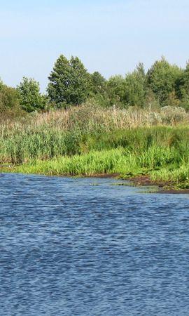 28271 скачать обои Пейзаж, Река, Деревья - заставки и картинки бесплатно