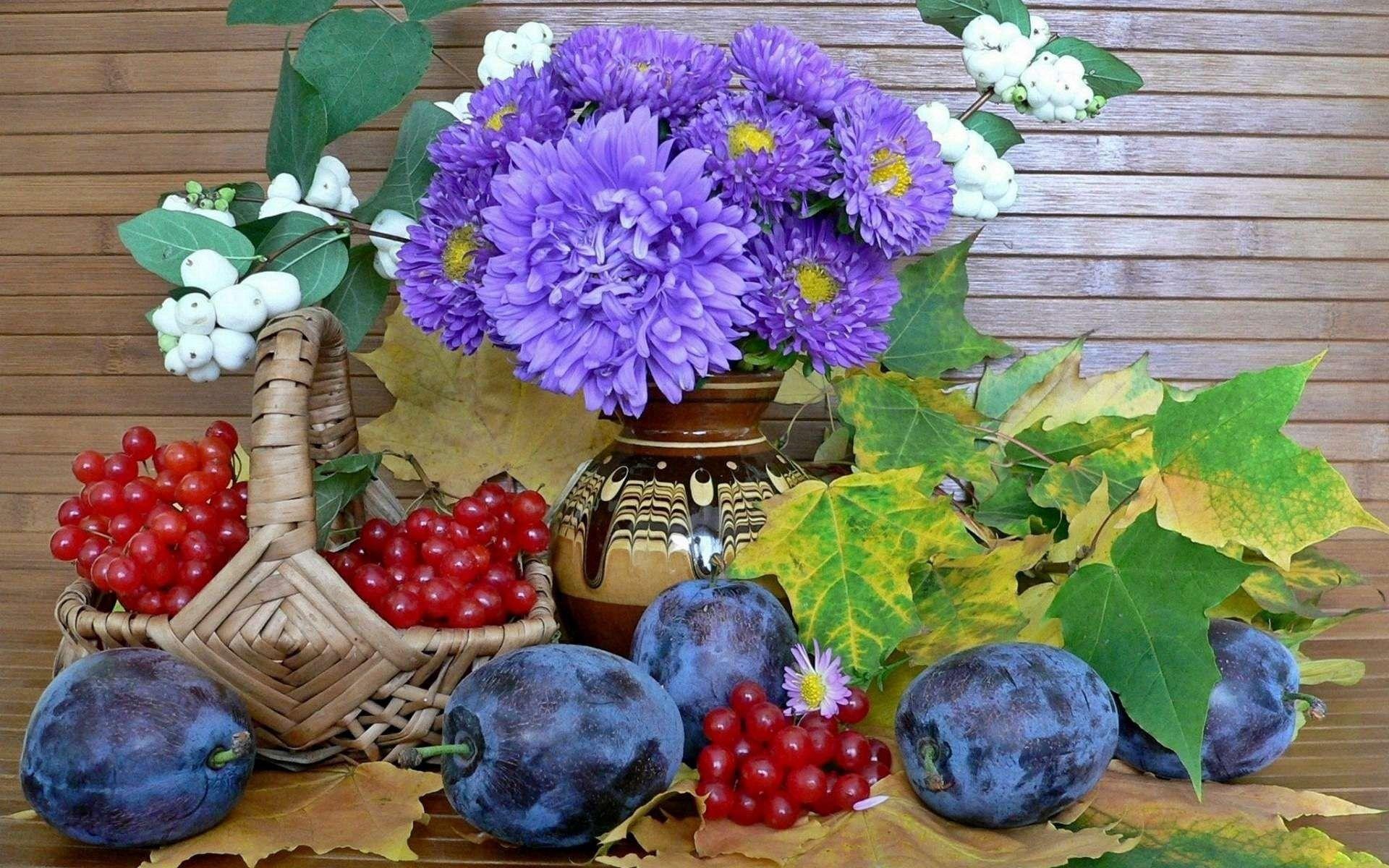 107256 скачать обои Еда, Натюрморт, Сливы, Цветы - заставки и картинки бесплатно