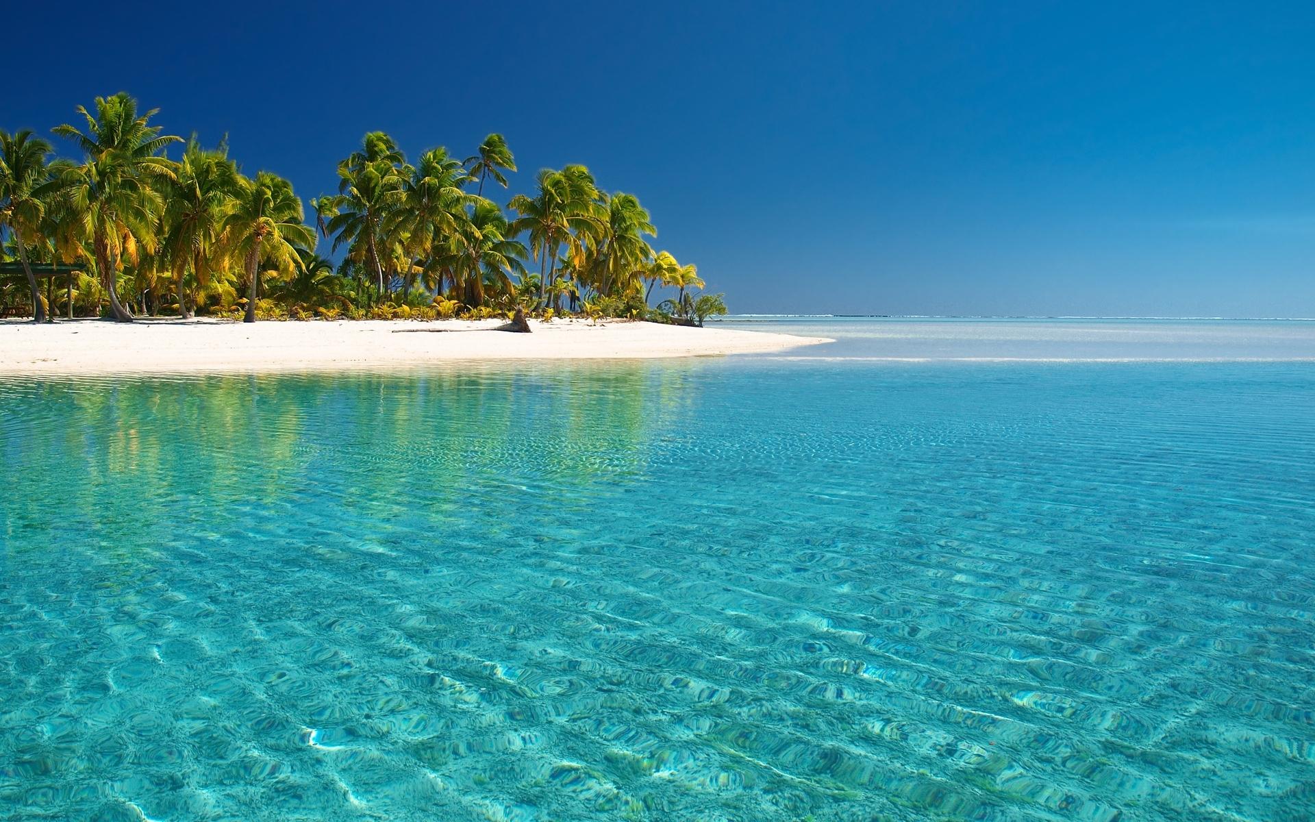 39461 скачать обои Пейзаж, Пляж, Пальмы - заставки и картинки бесплатно