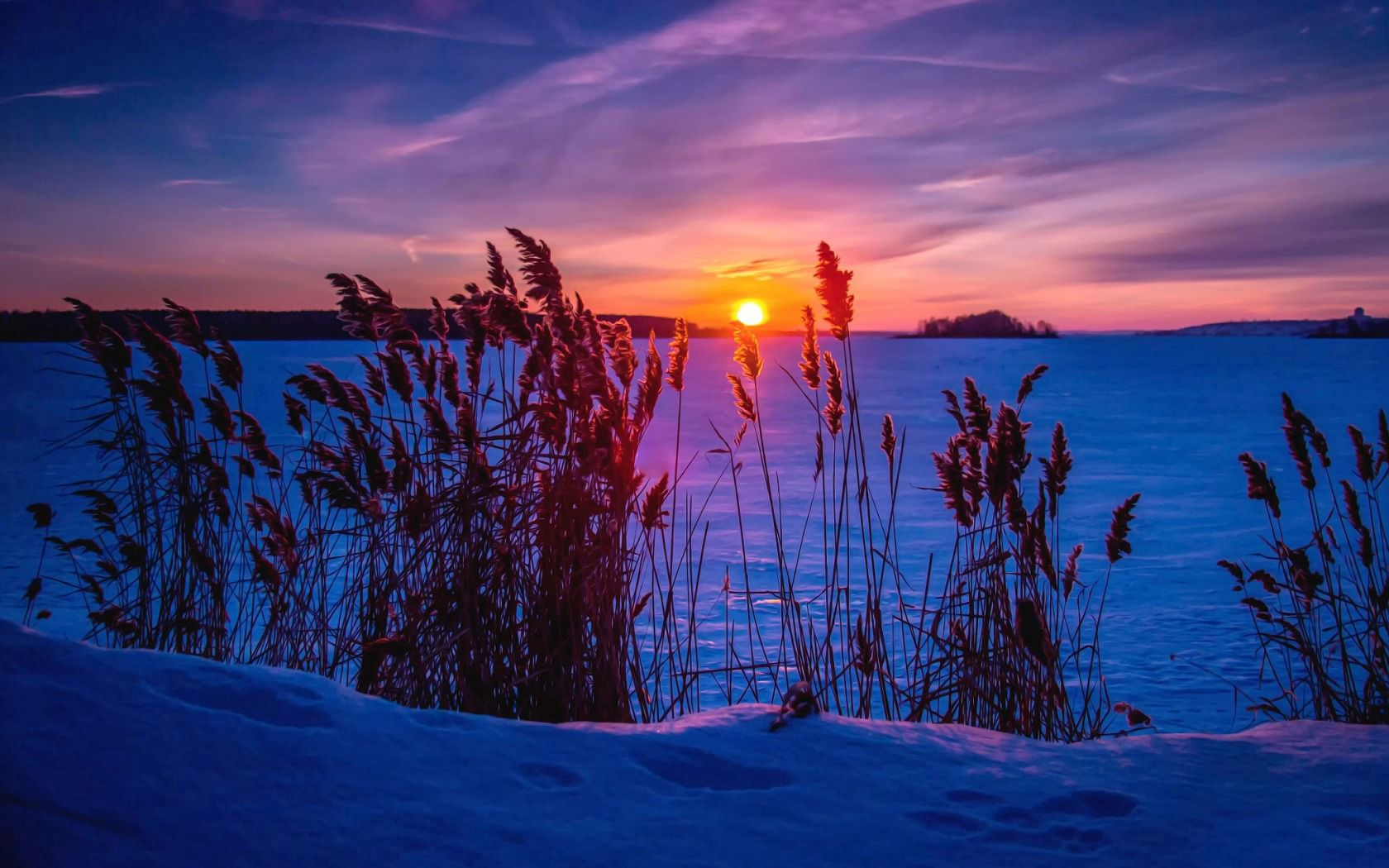 81918 download wallpaper Winter, Nature, Sunset, Grass, Snow screensavers and pictures for free