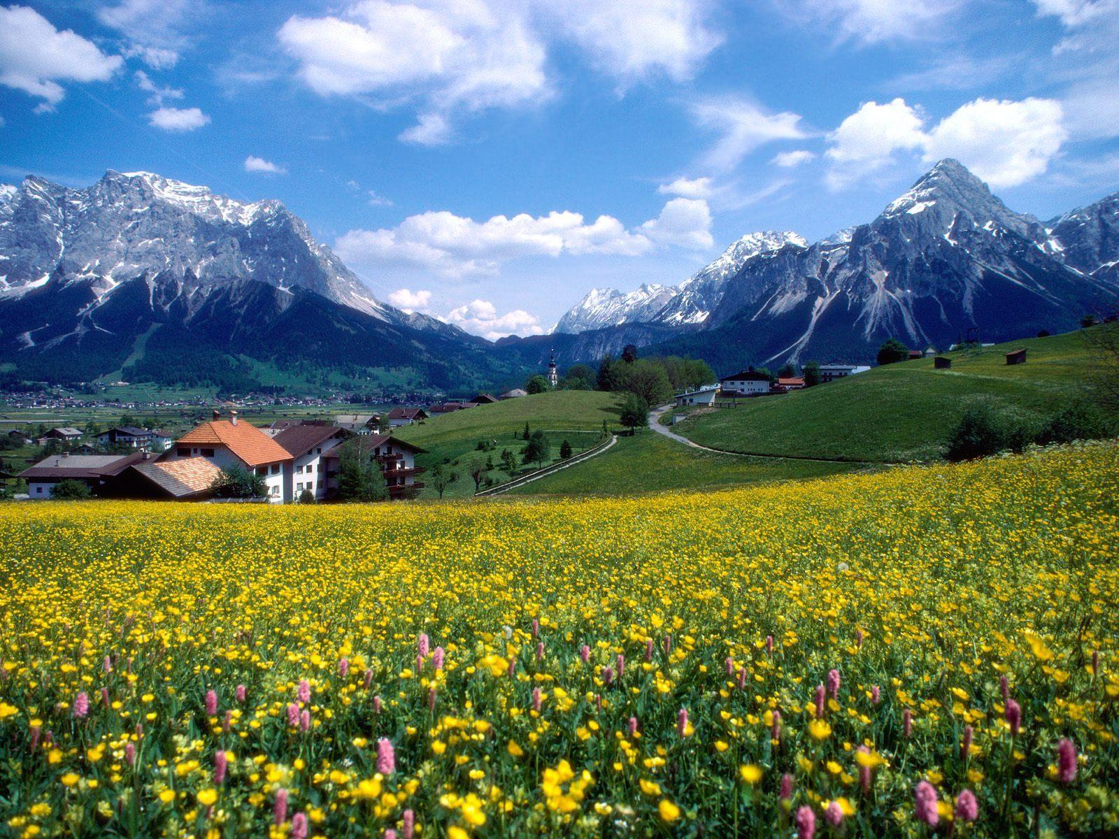 12128 скачать обои Растения, Пейзаж, Цветы, Горы - заставки и картинки бесплатно