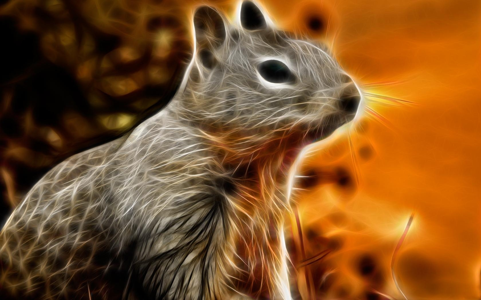 7256 download wallpaper Animals, Squirrel, Pictures screensavers and pictures for free