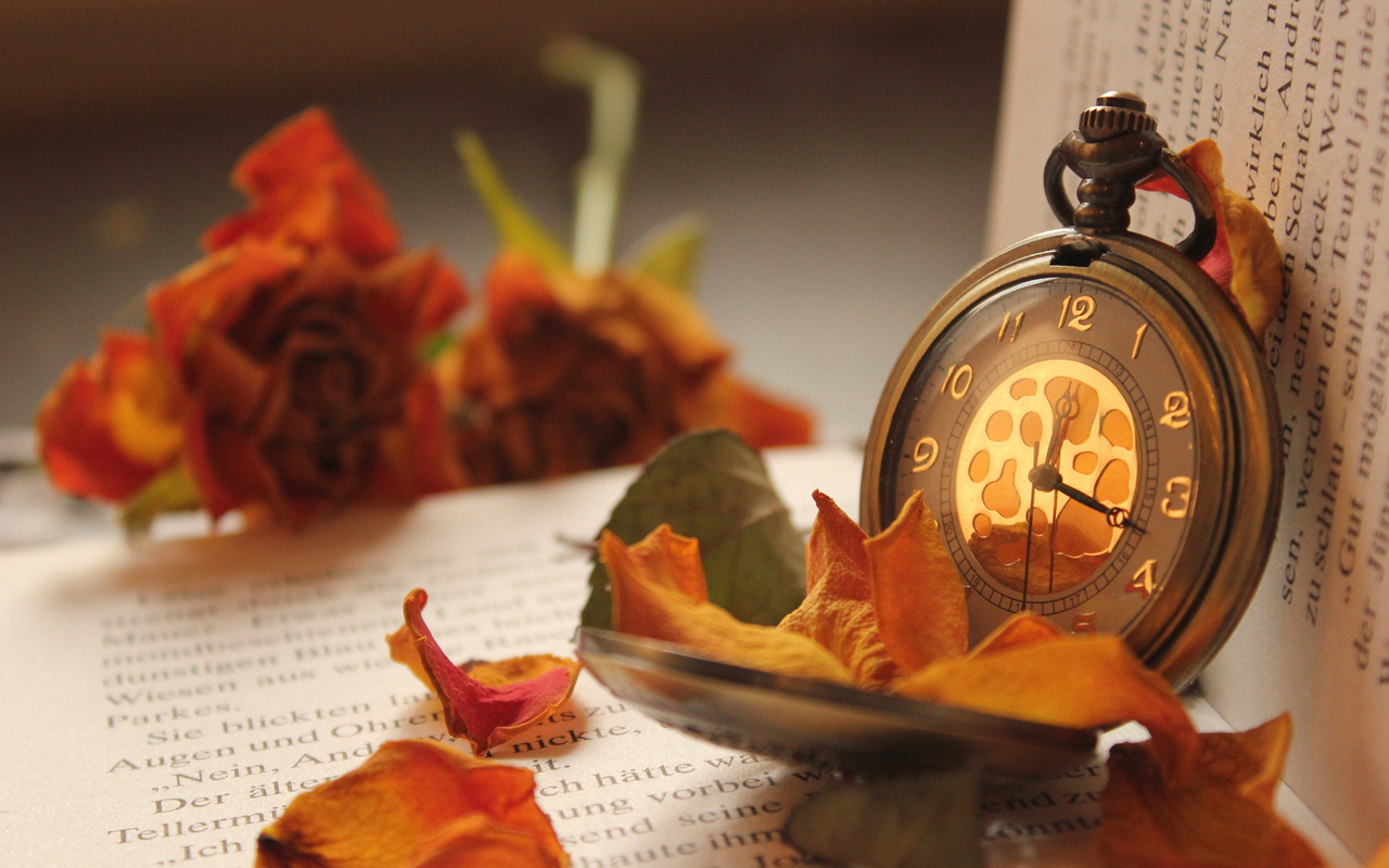 16192 скачать обои Осень, Объекты, Часы - заставки и картинки бесплатно