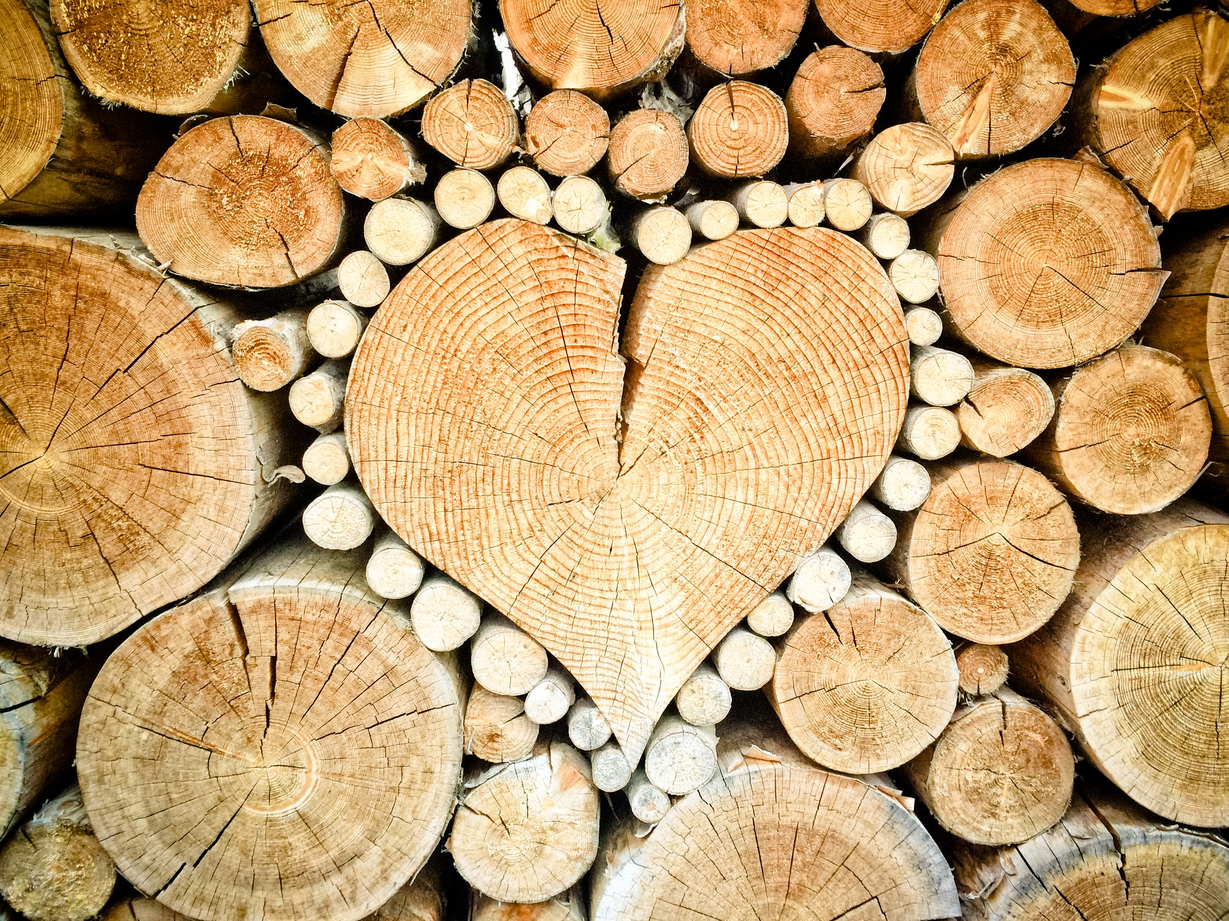 82063 Screensavers and Wallpapers Heart for phone. Download Love, Wood, Tree, Heart, Logs pictures for free