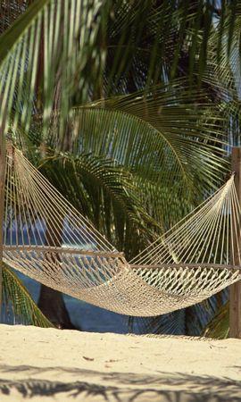 31002 скачать обои Пейзаж, Пляж, Пальмы - заставки и картинки бесплатно